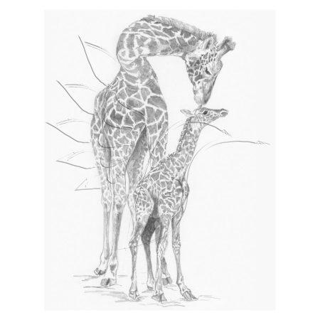Rajzkészlet előrenyomott vázlattal - Sketching Made Easy A/4 - Giraffe & Baby