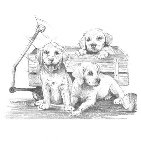 Rajzkészlet, nagy, előrenyomott vázlattal - Sketching Made Easy Large - Puppies & Wagon