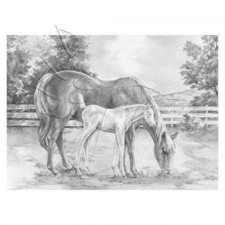 Rajzkészlet, nagy, előrenyomott vázlattal - Sketching Made Easy Large - Horse & Colt