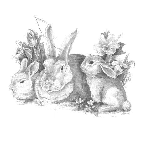 Rajzkészlet, nagy, előrenyomott vázlattal - Sketching Made Easy Large - Bunnies