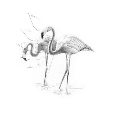 Rajzkészlet előrenyomott vázlattal - Sketching Made Easy Mini A/5 - Flamingoes