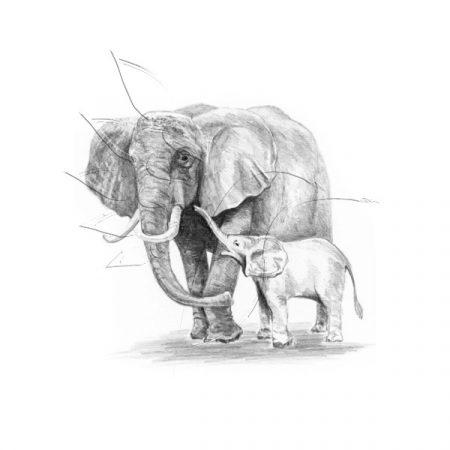 Rajzkészlet előrenyomott vázlattal - Sketching Made Easy Mini A/5 - Elephant