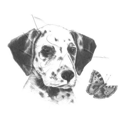 Rajzkészlet előrenyomott vázlattal - Sketching Made Easy Mini A/5 - Dalmatian Pup