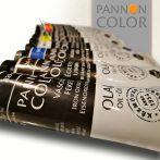 Olajfesték - Pannoncolor Művészfesték 22ml - elefántcsontfekete 841-4