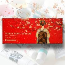 Akrilfesték készlet - Turner Acryl Gouache 12x11ml