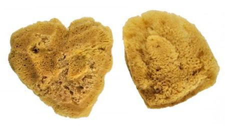 Festő Szivacsok - Royal JUMBO Silk Sponge - nagy selyem szivacskészlet 2 db-os készlet